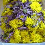 お花の乾燥もできます!