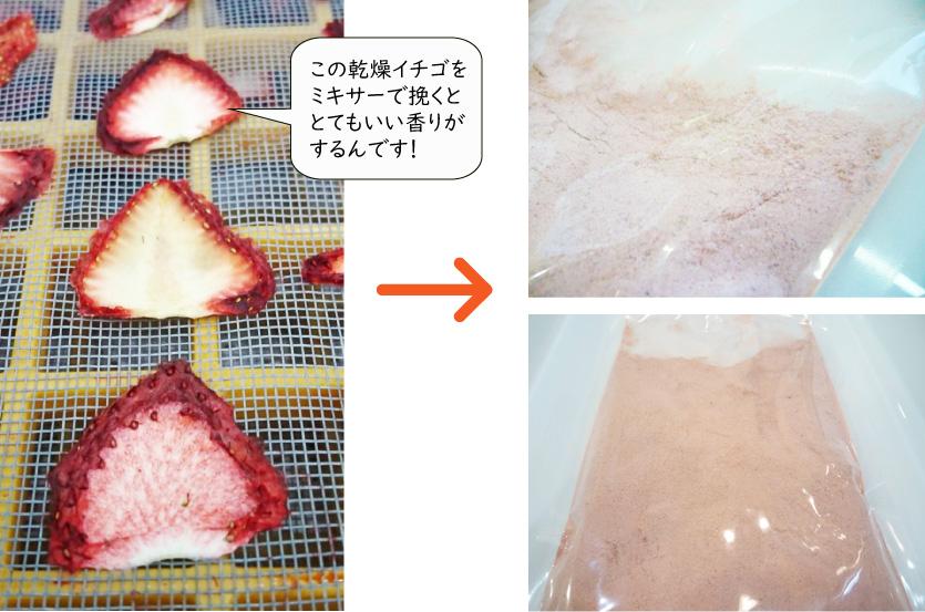 イチゴを粉末に!